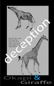 Giraffe + Okapi - Dawkins