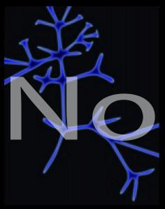 Darwin's Tree - No
