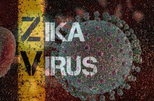 Zika Virus III